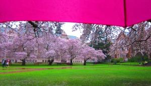 From under my umbrella